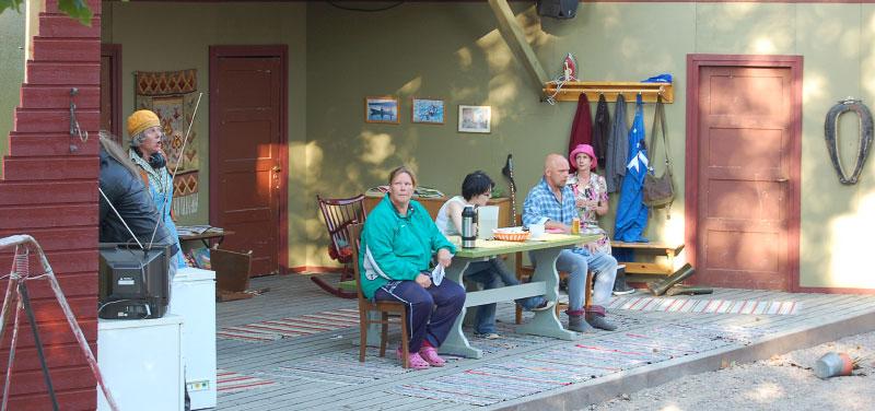 2012 Suomenhevonen 14