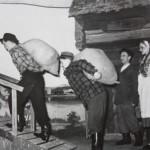 1957 Keinumorsian